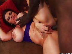 Big tit mature slut Daphne Rosen loves black