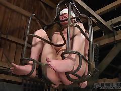 caged and pinched